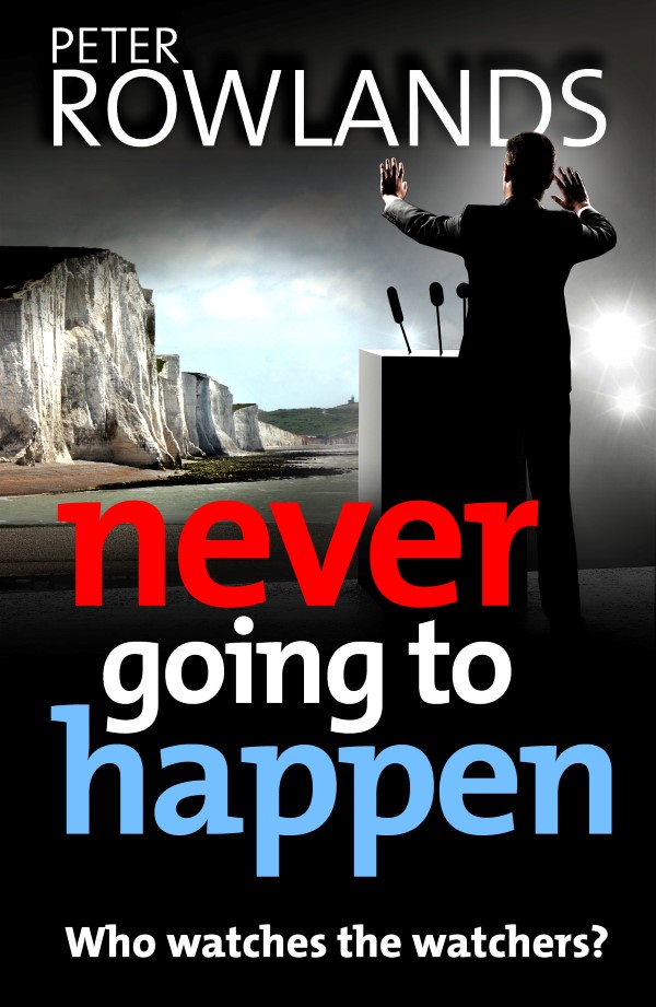 Read more about this book on Never Going to Happen page