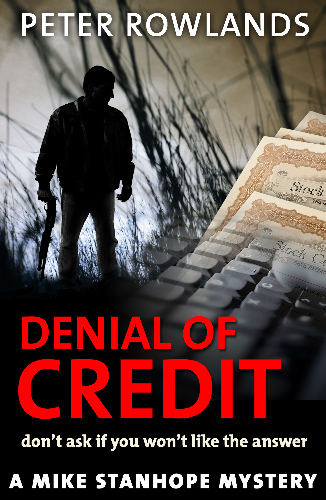 Denial of Credit cover